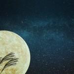 中秋の名月っていつなの?満月じゃない?十五夜とは違うの?